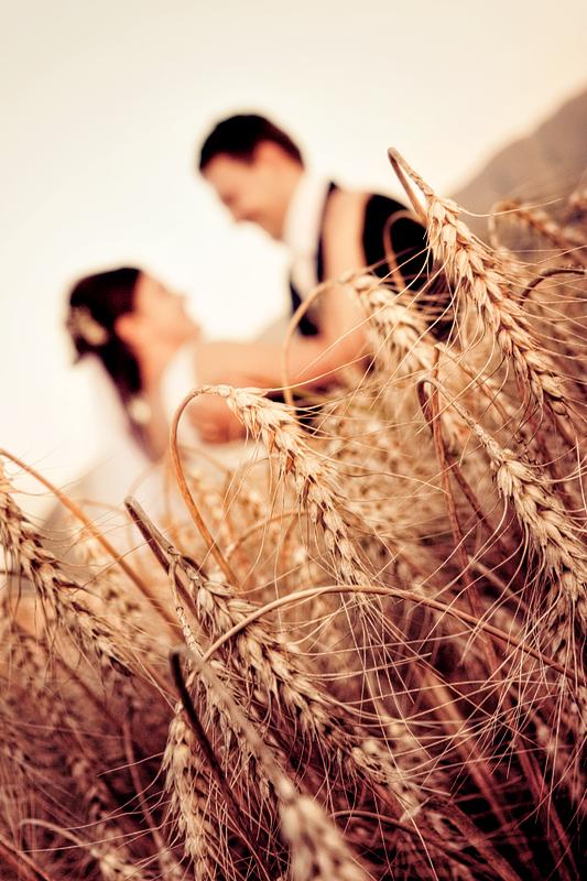 Foto nunta Codlea (23)